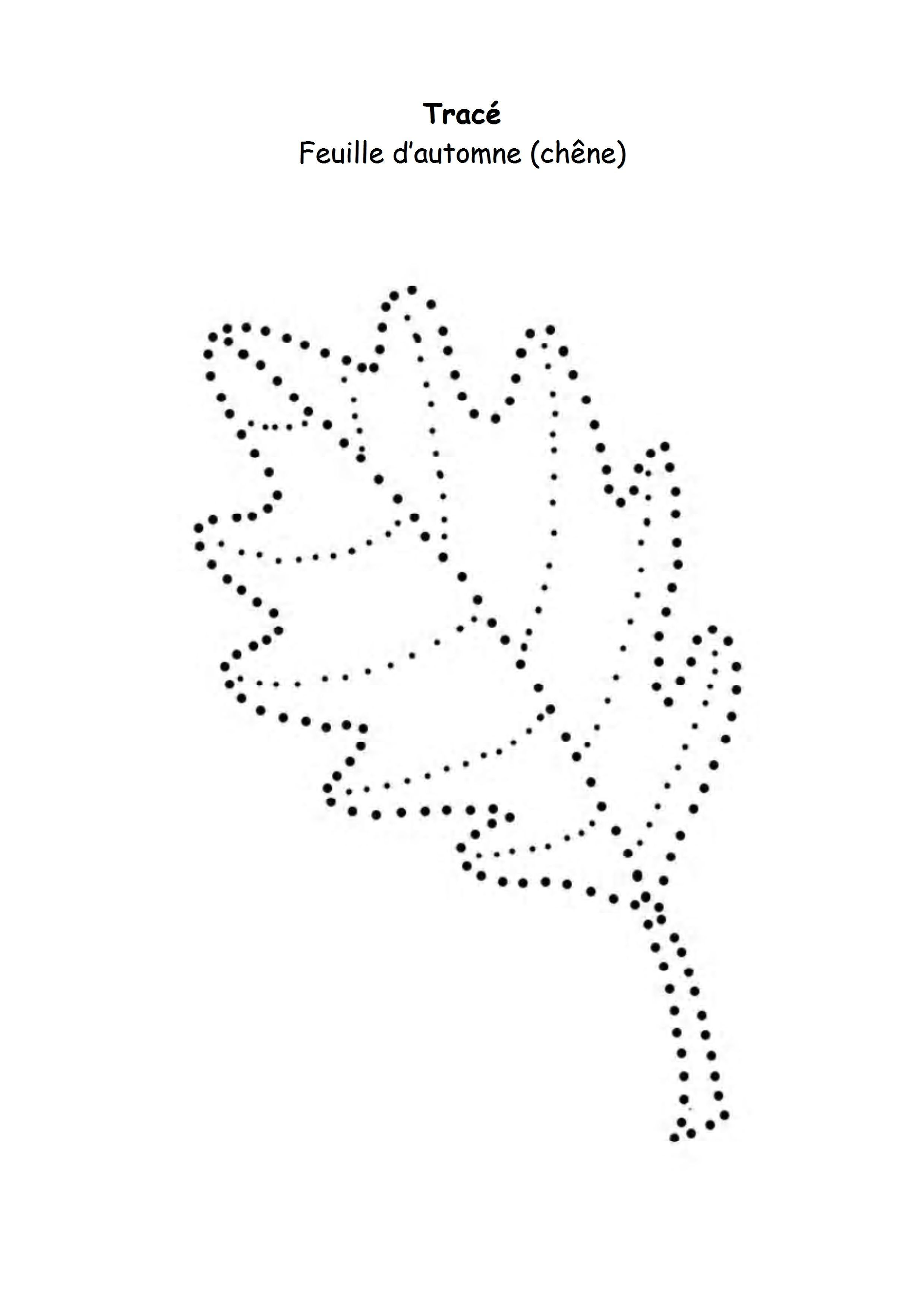L 39 automne feuille de ch ne en pointill s - Dessin d automne facile ...