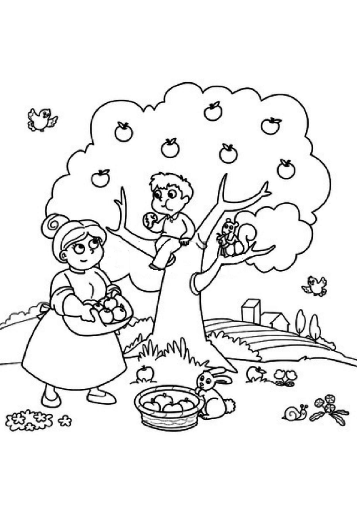 Coloriage automne - Pommes dessin ...