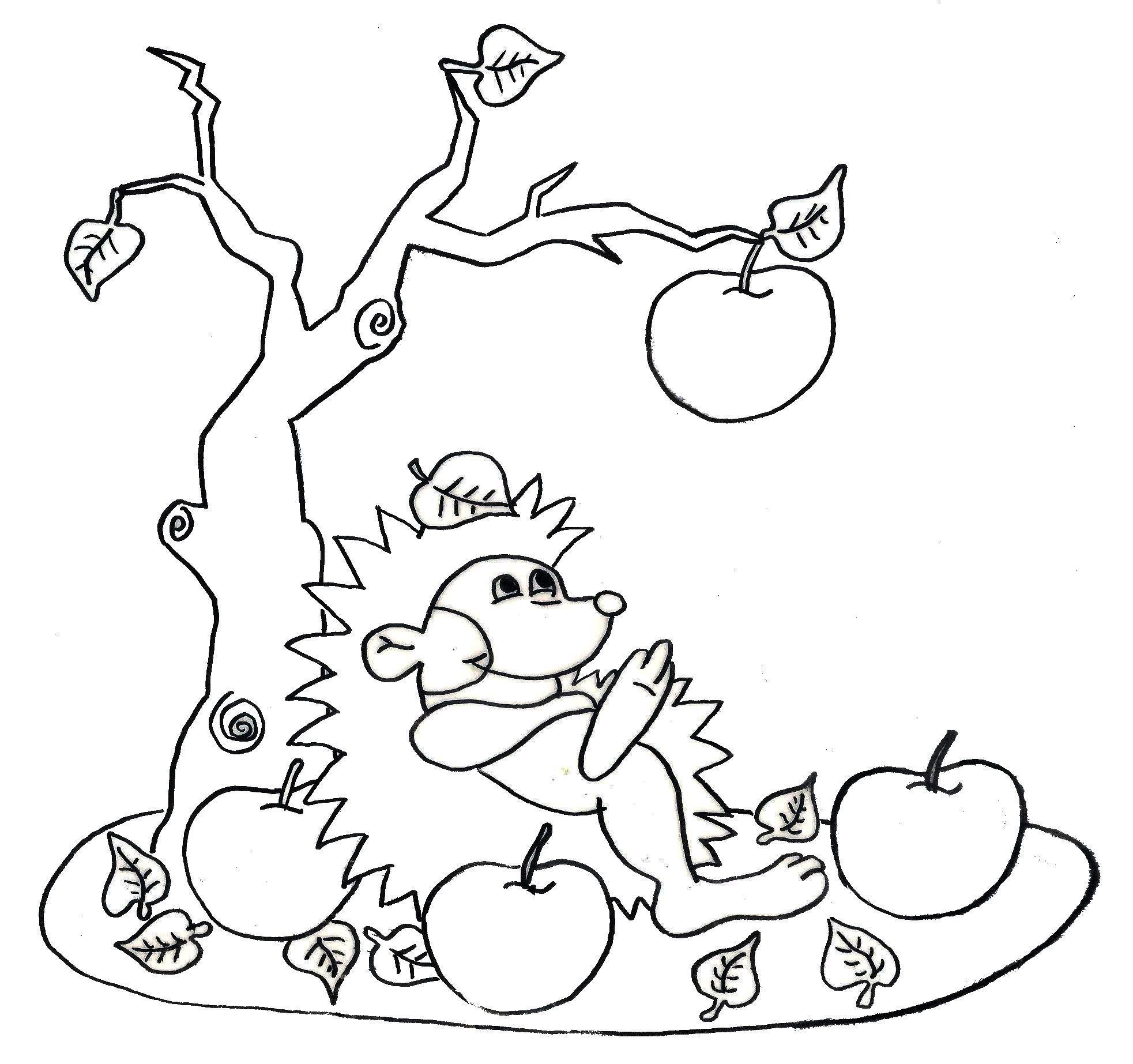 H risson et pommes d 39 automne - Herisson coloriage ...